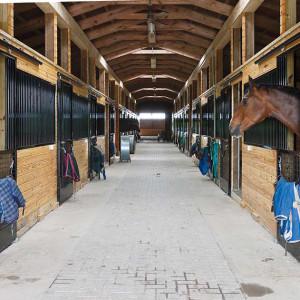 inside horse barn