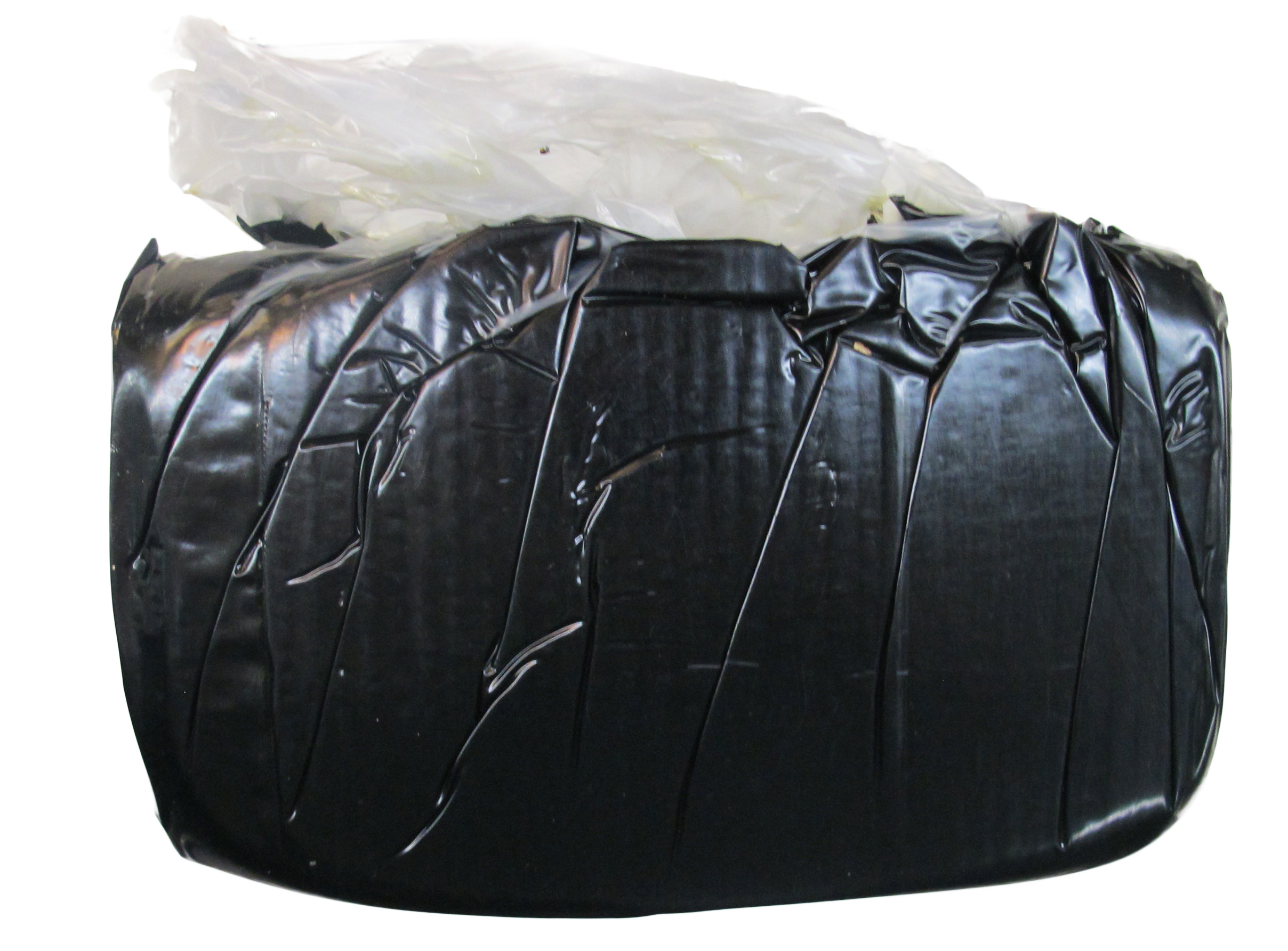 IMG_5622_black bag