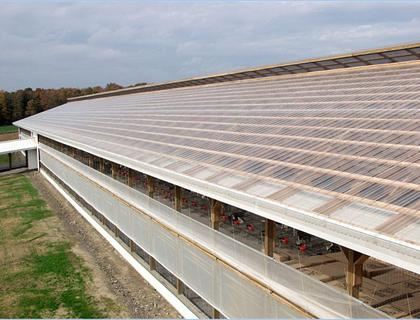 Polycarbonate Skylights A B Martin Roofing Supply