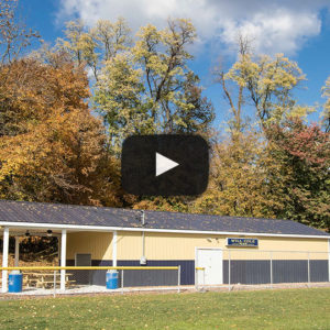 Building Showcase: Gold and Dark Blue Pavilion